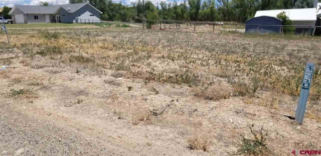 535 (LOT 6) Juniper Street, Hotchkiss, CO 81419 (MLS #741150) :: Durango Home Sales