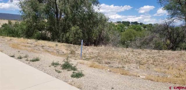 623 (LOT 17) Juniper Street, Hotchkiss, CO 81419 (MLS #741153) :: Durango Home Sales