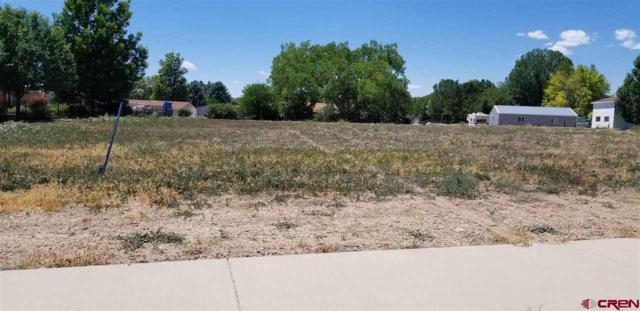 572 (LOT 22) Juniper Street, Hotchkiss, CO 81419 (MLS #741155) :: Durango Home Sales