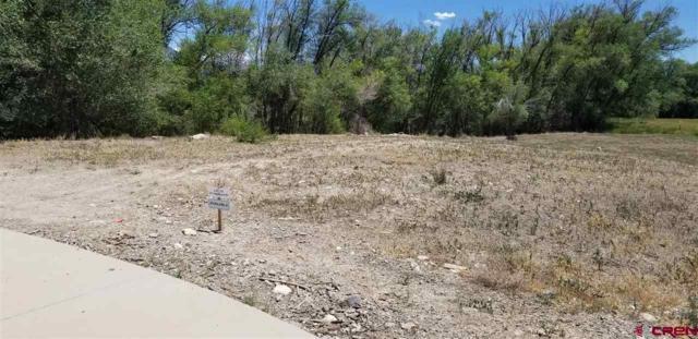 471 (LOT 2A) Hawthorn Drive, Hotchkiss, CO 81419 (MLS #741164) :: Durango Home Sales