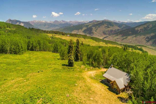 515 Oversteeg Gulch Road, Crested Butte, CO 81224 (MLS #741403) :: Durango Home Sales