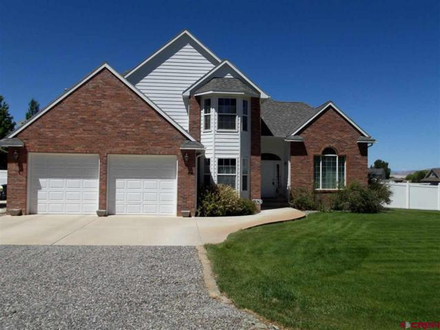 59363 Lupine Court, Montrose, CO 81403 (MLS #741730) :: CapRock Real Estate, LLC