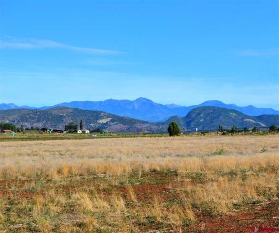 212 Entrada Del Sol, Durango, CO 81303 (MLS #741828) :: Durango Mountain Realty