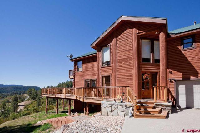 130 Puma Place, Durango, CO 81301 (MLS #742141) :: Durango Home Sales
