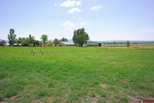 14415 Road 26, Dolores, CO 81323 (MLS #742459) :: Durango Home Sales