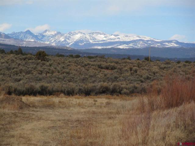 3335 Cr 311, Durango, CO 81301 (MLS #742469) :: Durango Mountain Realty