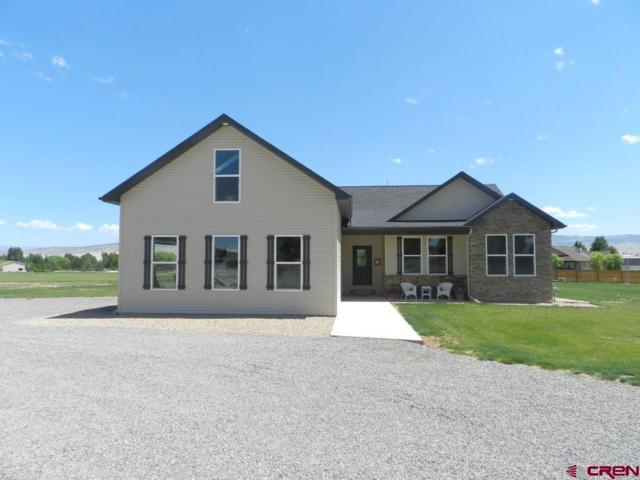 11850 Joyful Way, Montrose, CO 81401 (MLS #742551) :: CapRock Real Estate, LLC