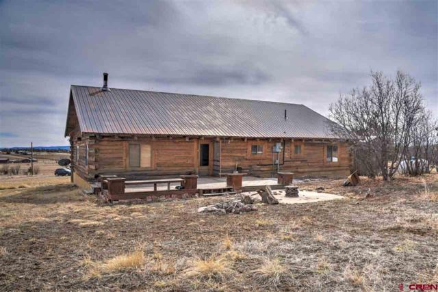 529 Rustic Road, Durango, CO 81301 (MLS #742574) :: Durango Home Sales