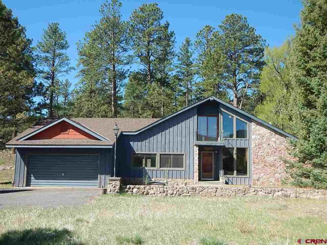 143 Conifer, South Fork, CO 81154 (MLS #742622) :: Durango Home Sales