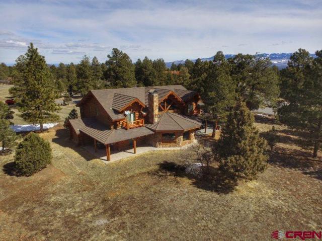 115 Pika Lane, Ridgway, CO 81432 (MLS #742699) :: Durango Home Sales