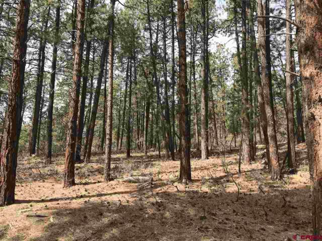 243 Canyon Dr, Durango, CO 81301 (MLS #742915) :: Durango Mountain Realty