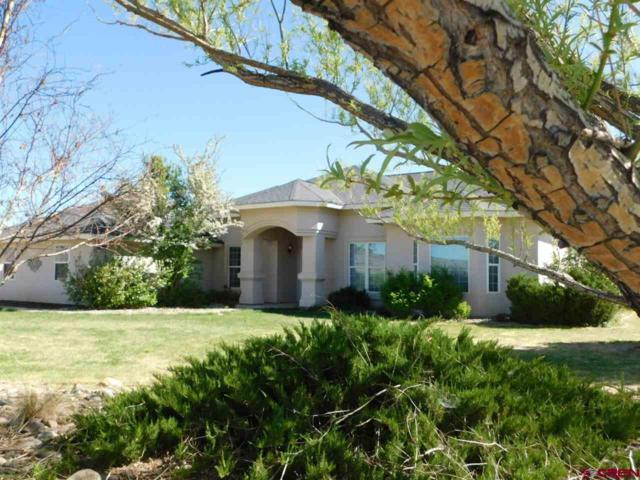 28228 Road H.6, Cortez, CO 81321 (MLS #742940) :: Durango Home Sales