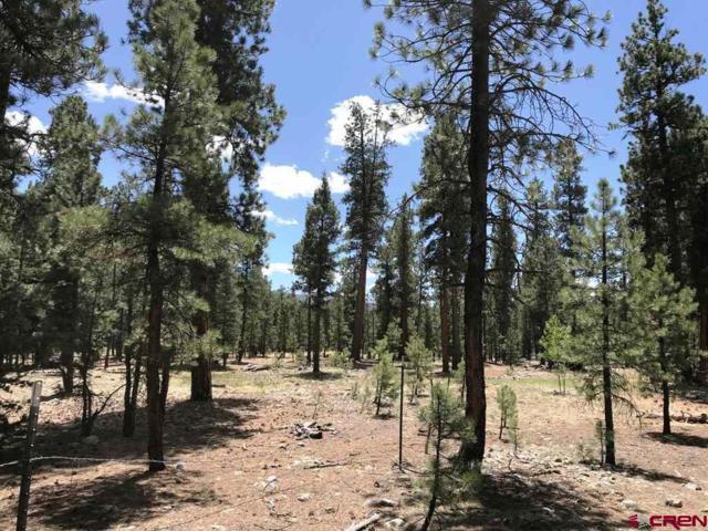 TBD Ranch Road, Vallecito Lake/Bayfield, CO 81122 (MLS #743077) :: Durango Home Sales