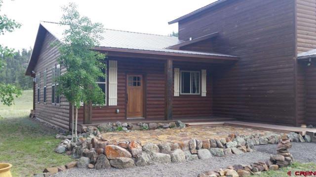 398 Deer Run, South Fork, CO 81154 (MLS #743147) :: Durango Home Sales