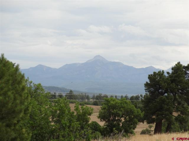 1234 Scenic Avenue, Pagosa Springs, CO 81147 (MLS #743397) :: Durango Home Sales