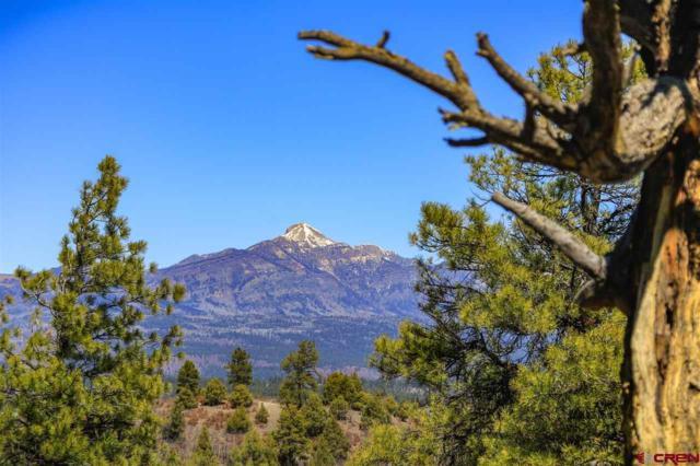 1654 Carino Place, Pagosa Springs, CO 81147 (MLS #743461) :: CapRock Real Estate, LLC