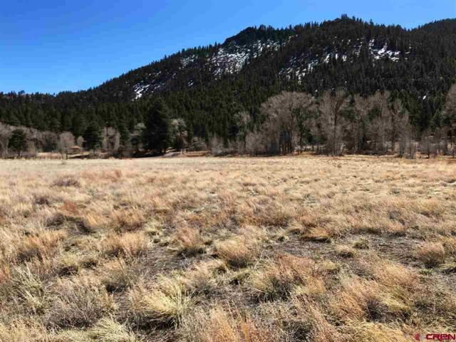 tbd Mall Street, South Fork, CO 81154 (MLS #743472) :: The Dawn Howe Group   Keller Williams Colorado West Realty