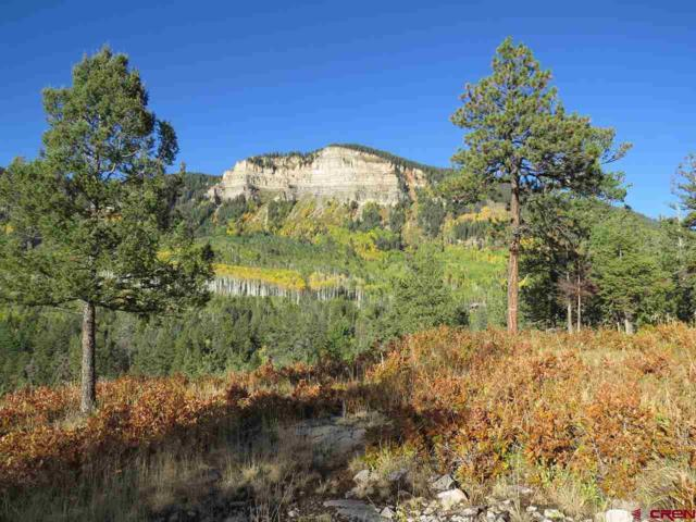 367 Two Dogs Trail, Durango, CO 81301 (MLS #743500) :: Durango Home Sales