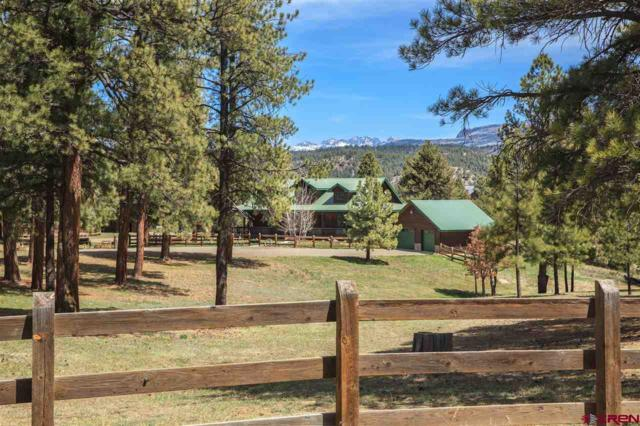 101 Buckboard Place, Pagosa Springs, CO 81147 (MLS #743767) :: Durango Home Sales
