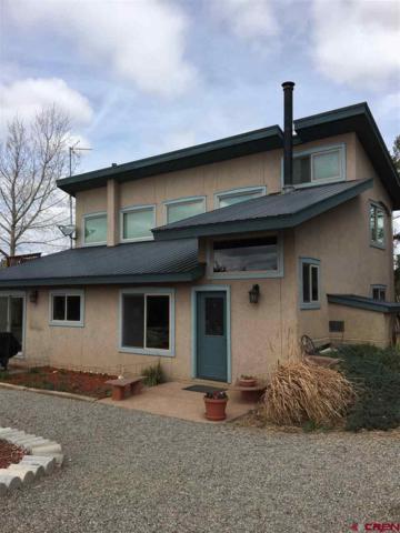 1177 Cr 305, Durango, CO 81303 (MLS #743865) :: Durango Mountain Realty