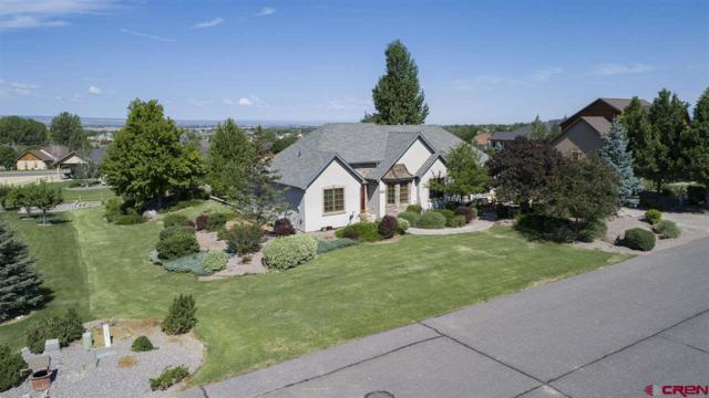 3147 Monte Vista Circle, Montrose, CO 81401 (MLS #743883) :: Keller Williams CO West / Mountain Coast Group