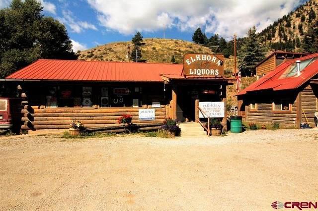 135 S Gunnison Avenue, Lake City, CO 81235 (MLS #743977) :: The Dawn Howe Group   Keller Williams Colorado West Realty