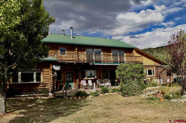 101 River Lane, Ridgway, CO 81432 (MLS #744274) :: Durango Home Sales