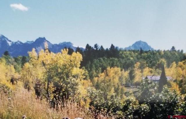 124 Alpine Lane, Ridgway, CO 81432 (MLS #744310) :: CapRock Real Estate, LLC