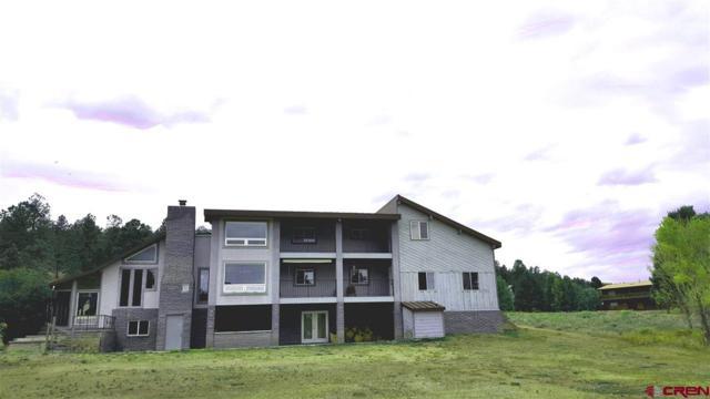 558 Conifer Drive, South Fork, CO 81154 (MLS #744602) :: Durango Home Sales