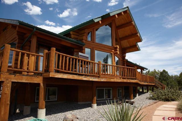 20828 Brimstone Road, Cedaredge, CO 81413 (MLS #744670) :: Durango Home Sales
