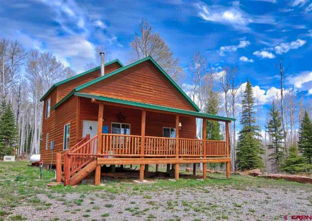 58203 Elk Dr., Montrose, CO 81403 (MLS #744752) :: Durango Home Sales