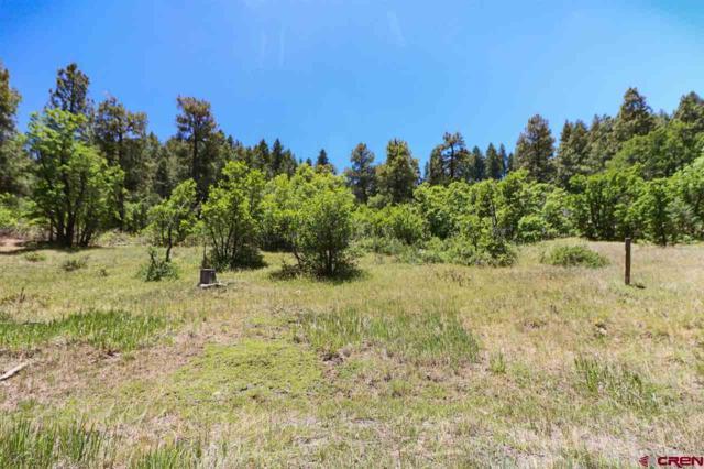 870 Cool Pines Drive, Pagosa Springs, CO 81147 (MLS #744843) :: Durango Home Sales