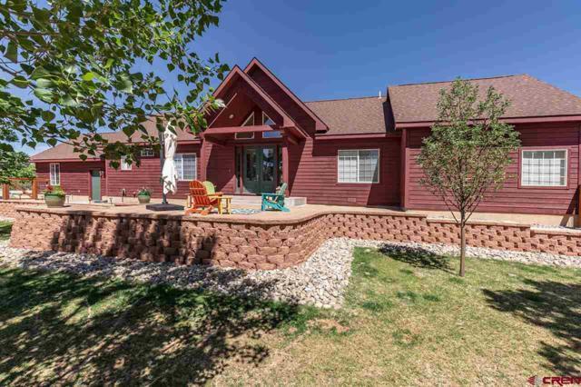 480 Chamisa Drive, Durango, CO 81303 (MLS #745025) :: Durango Mountain Realty
