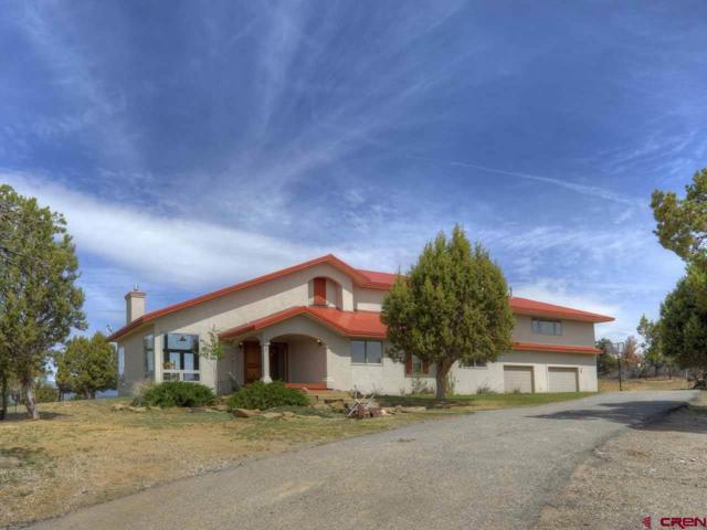182 Etta Place, Durango, CO 81303 (MLS #745069) :: CapRock Real Estate, LLC