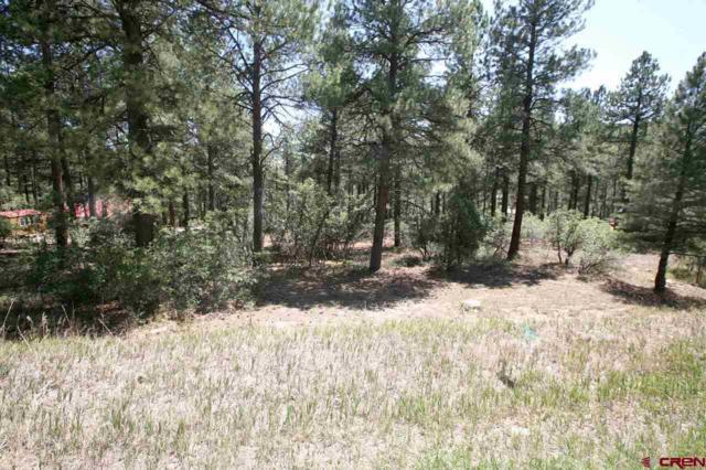 471 Eagle Pass, Durango, CO 81301 (MLS #745104) :: Durango Home Sales
