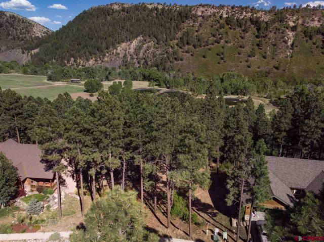 143 El Diente Drive, Durango, CO 81301 (MLS #745161) :: Durango Mountain Realty