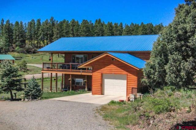 105 Terrace Drive, Pagosa Springs, CO 81147 (MLS #745162) :: Durango Home Sales