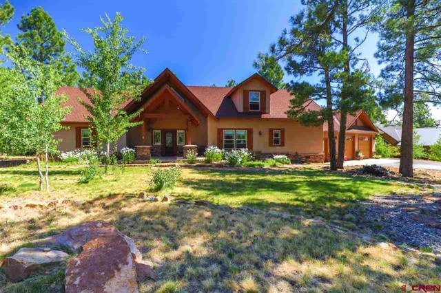 229 Stevens Circle, Pagosa Springs, CO 81147 (MLS #745347) :: CapRock Real Estate, LLC