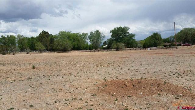 2350 Apache St, Cortez, CO 81321 (MLS #745391) :: CapRock Real Estate, LLC