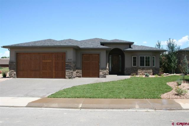 1017 Courthouse Peak Lane, Montrose, CO 81403 (MLS #745498) :: CapRock Real Estate, LLC