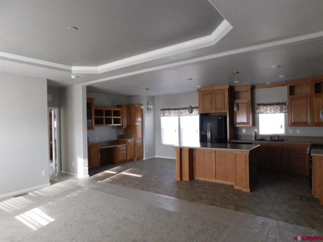 11155 Road 30.1, Mancos, CO 81328 (MLS #745505) :: CapRock Real Estate, LLC