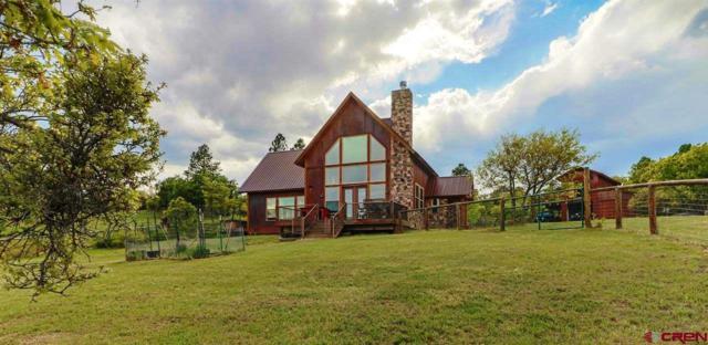 667 Soaring Eagle Ct., Pagosa Springs, CO 81147 (MLS #745651) :: Durango Home Sales