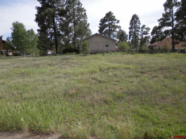 75 Sundown Circle, Pagosa Springs, CO 81147 (MLS #745828) :: CapRock Real Estate, LLC
