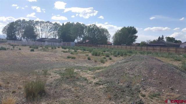 176 Pintada Drive, Monte Vista, CO 81144 (MLS #745951) :: Durango Home Sales