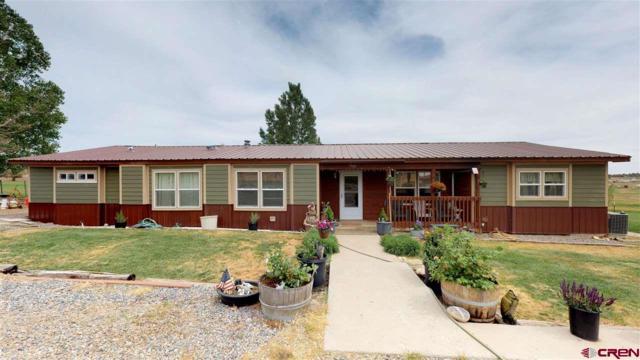 7960 Cr 510, Bayfield, CO 81122 (MLS #745974) :: Durango Home Sales