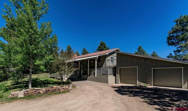 442 Dutton Drive, Pagosa Springs, CO 81147 (MLS #746137) :: CapRock Real Estate, LLC