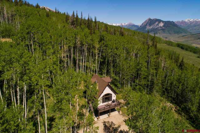 450 Oversteeg Gulch Road, Crested Butte, CO 81224 (MLS #746164) :: CapRock Real Estate, LLC