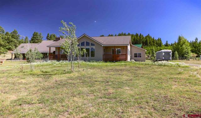 377 Horseshoe Circle, Pagosa Springs, CO 81147 (MLS #746684) :: CapRock Real Estate, LLC