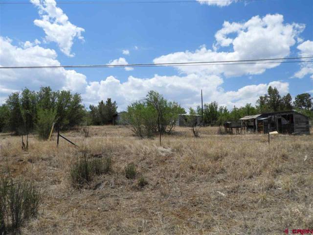 439 Cr 232, Durango, CO 81303 (MLS #746762) :: Durango Mountain Realty