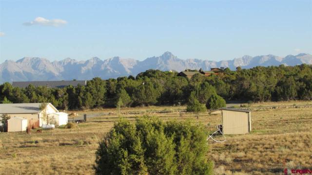 126 Mountain Vista Court, Montrose, CO 81403 (MLS #747399) :: CapRock Real Estate, LLC